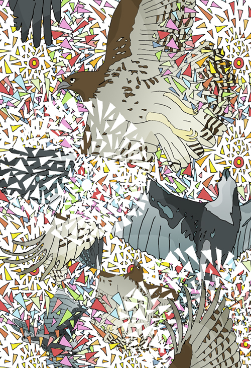 Birdscollidesmall