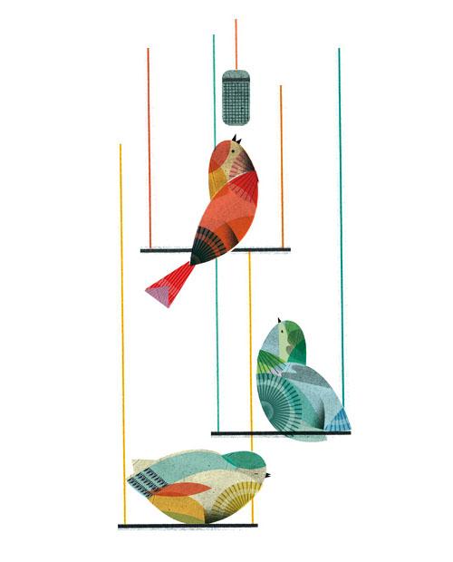 Lottanieminen-birds