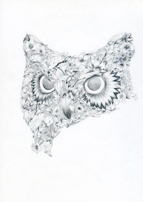 F_Owl