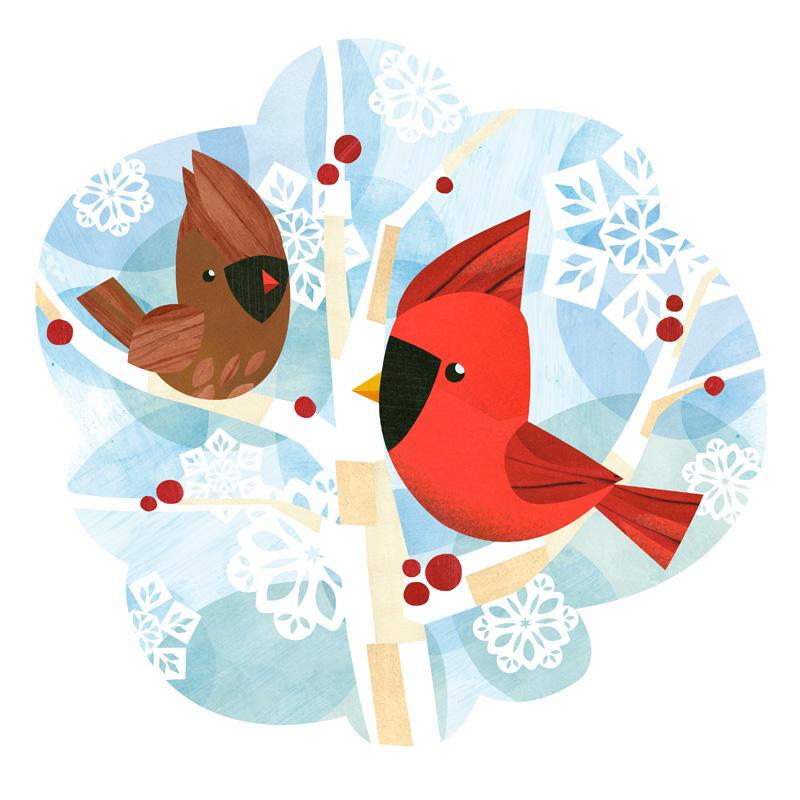 Birds-Cardinal100dpi